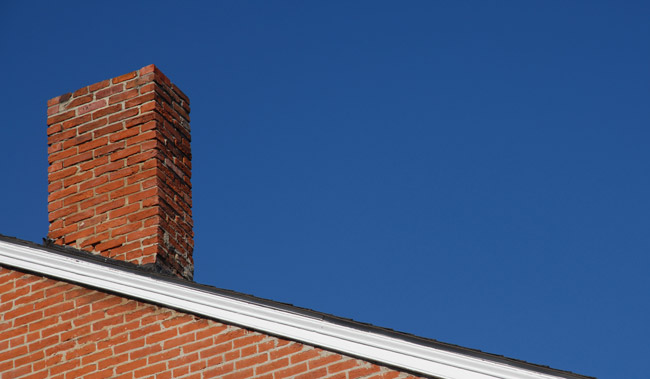 Chimney caps for animal control