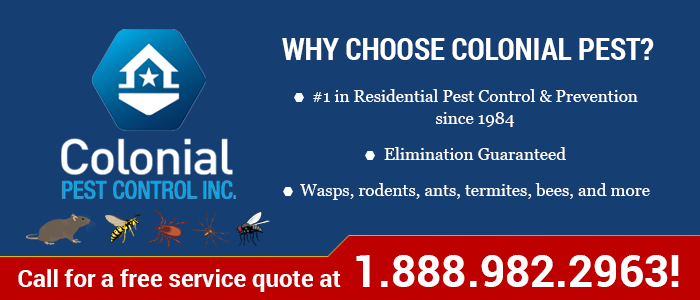 Why Choose Colonial?